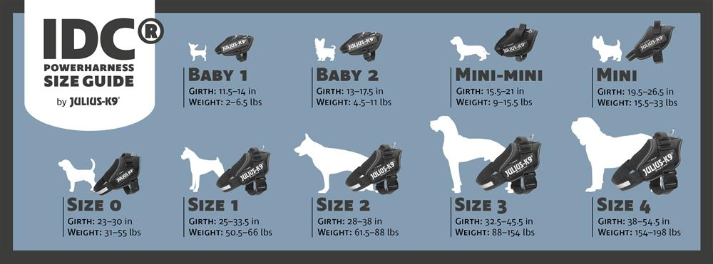 Guide to Sizing & Dog Breeds – Best 4 Paws