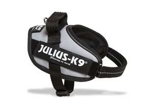 Picture of Julius-K9 harness IDC®, Size Mini-Mini, Silver
