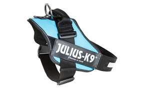 Picture of Julius-K9 harness IDC®, Size 2, Aquamarine