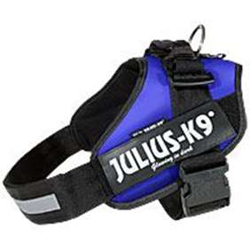 Picture of Julius-K9 harness IDC®, Size 3, Blue