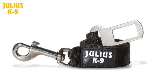 Picture of Safety belt (16SGA-2)