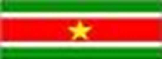 Picture of Flag label Suriname (162LG-NF-SU)
