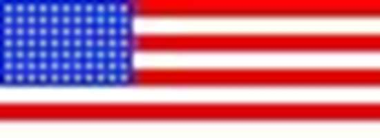 Picture of Flag label USA (162LG-NF-USA)