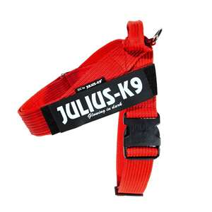 Picture for category IDC® Belt harness