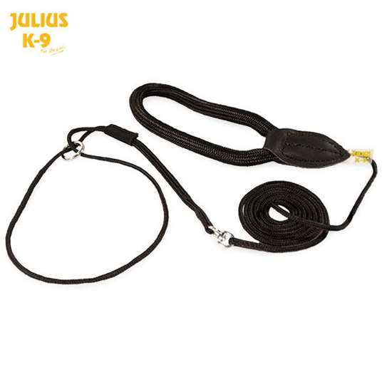 Picture of Show leash - 1,2 m / 3,9 feet