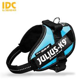 Picture of Julius-K9 harness IDC®, Size Mini-Mini, Aquamarine