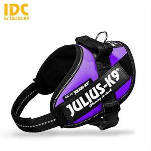 Picture of Julius-K9 harness IDC®, Size Mini-Mini, Purple