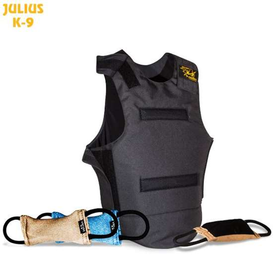 Picture of Hard protector vest with hook and looptug