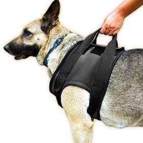 Picture of Rehabilitation harness – Front, Size XXL (16NEO-VS/XXL)