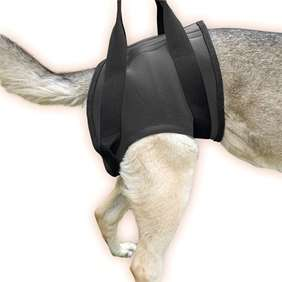 Picture of Rehabilitation harness – Hind Size L (16NEO-HS/L)