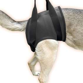Picture of Rehabilitation harness – Hind Size M (16NEO-HS/M)