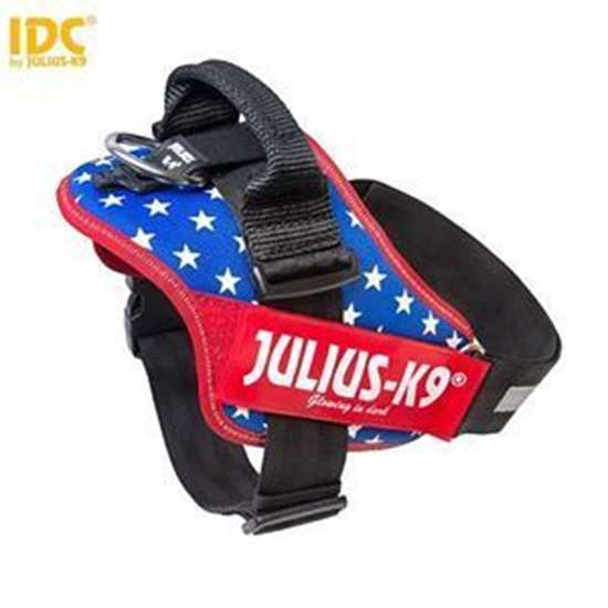 Picture of USA flag (16IDC-US-2)