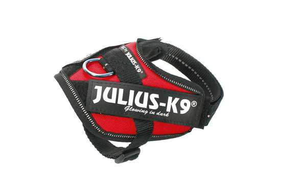 Picture of Julius-K9 harness IDC®, Size Baby 1, Red