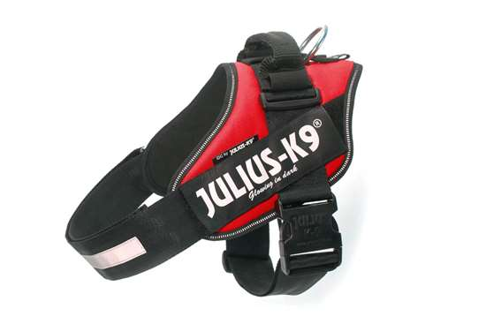 Julius-k9 IDC red harness with free leash size 3