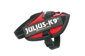 Julius-k9 IDC red harness with free leash size baby 2