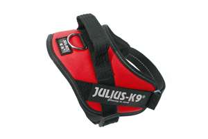 Picture of Julius-K9 harness IDC®, Size Mini, Red