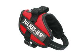 Julius-k9 IDC red harness with free leash size mini-mini
