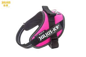 Picture of Julius-K9 harness IDC®, Size Mini, Dark Pink