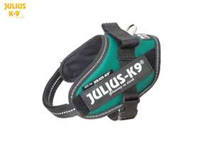 Picture of Julius-K9 harness IDC®, Size Mini-Mini, Dark Green