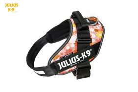 Picture of Julius-K9 harness IDC®, Size 0, Pink Flowers