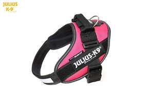 Picture of Julius-K9 harness IDC®, Size 0, Dark Pink