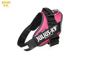 Picture of Julius-K9 harness IDC®, Size 2, Dark Pink