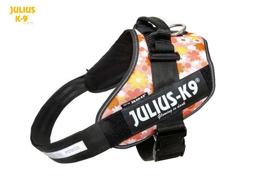 Picture of Julius-K9 harness IDC®, Size 3, Pink Flowers