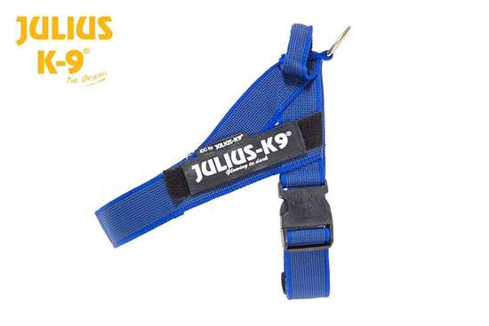 Picture of IDC® Blue & Gray belt harness Size Mini