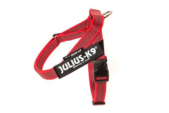 Picture of Belt Harness Red (16IDC-M-R-2015)
