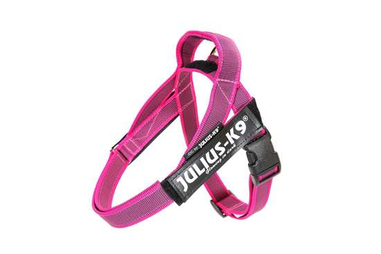 Picture of Belt Harness Pink (16IDC-M-PN-2015)