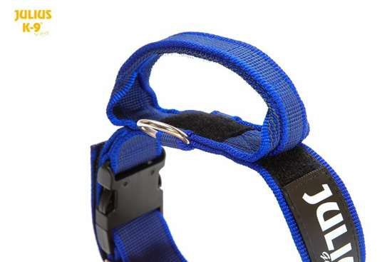 Picture of Julius-K9® collar with handle - BLUE (1.97 in)