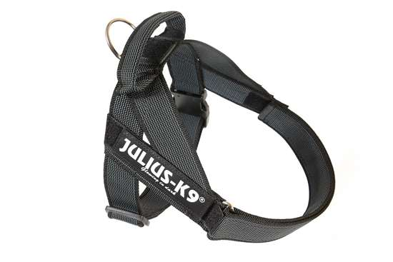 Picture of Belt Harness Black (16501-IDC-15)