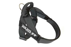 Picture of Belt Harness Black (16502-IDC15)