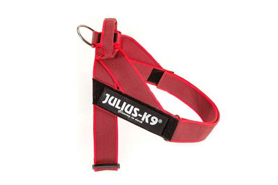 Picture of Belt Harness Red (16501-IDC-R-15)