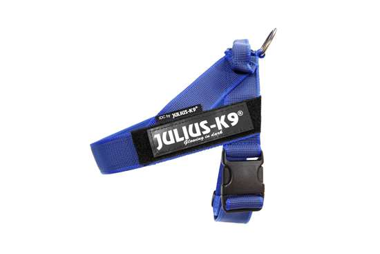 Picture of Belt Harness Blue (16502-IDC-B-2015-15)