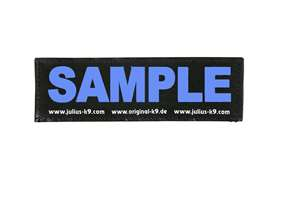 Picture of Wish label large - neon blue - 6,3 x 2 in (162LRW-G-AM)
