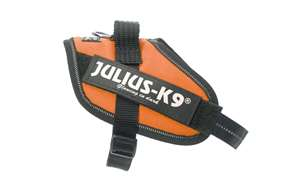 Picture of Julius-K9 harness IDC®, Size Mini-Mini, Orange