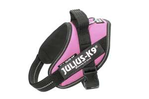 Picture of Julius-K9 harness IDC®, Size Mini-Mini, Pink