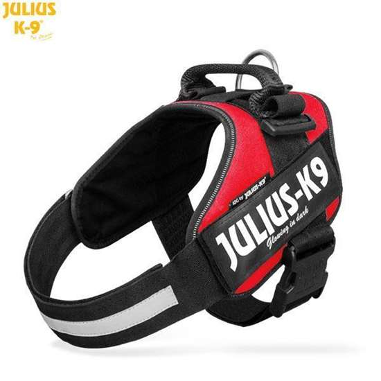 Picture of Julius-K9 harness IDC®, Size 1, Red