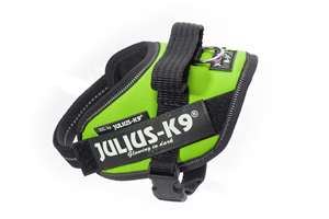 Picture of Julius-K9 harness IDC®, Size Mini, Kiwi Green