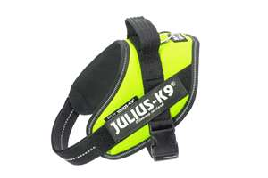 Picture of Julius-K9 harness IDC®, Size Mini, Neon Green