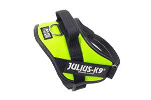 Picture of Julius-K9 harness IDC®, Size Mini-Mini, Neon Green