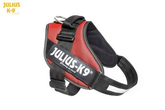 Picture of Julius-K9 IDC Harness - Size 1 - New Colors!