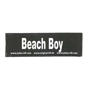 Picture of Beach Boy (162LR-K-46783)