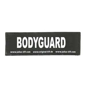 Picture of BODYGUARD (162LR-K-35282)