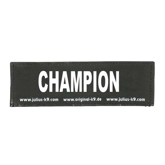 Picture of CHAMPION (162LR-K-35435)