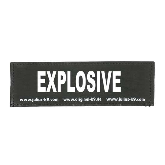 Picture of EXPLOSIVE (162LR-K-42594)