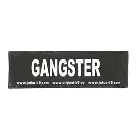 Picture of GANGSTER (162LR-K-35947)