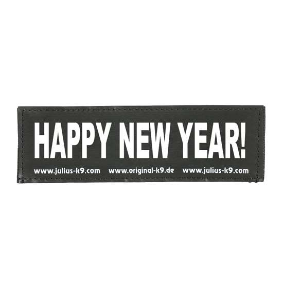 Picture of HAPPY NEW YEAR! (162LR-K-03106)