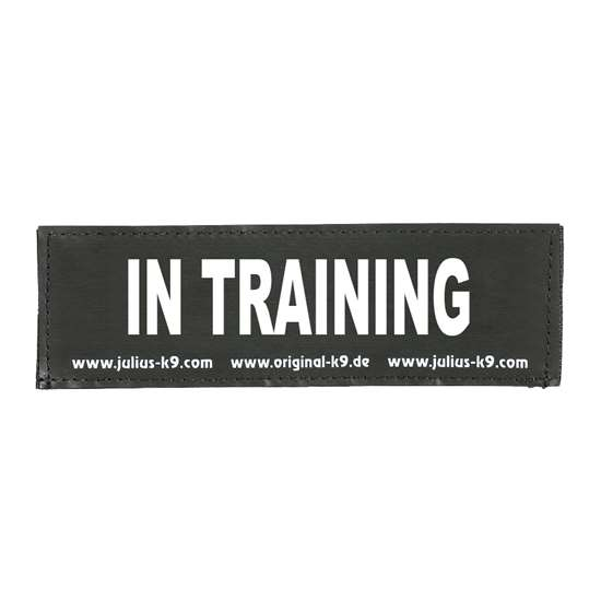 Picture of IN TRAINING (162LR-K-42440)